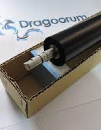 Dragoorum